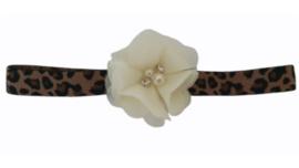 Haarband leopard met roomwitte bloem