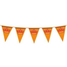 Reuzenvlaggenlijn Koningsdag (8m)