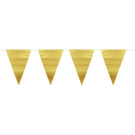 Goudkleurige Metallic Mat Vlaggenlijn - 6 meter