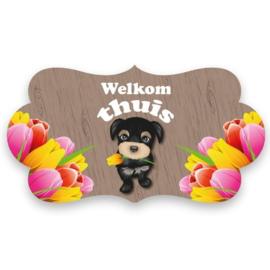 Feestbord 'Welkom thuis'