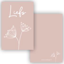 Mini kaartje liefs roze