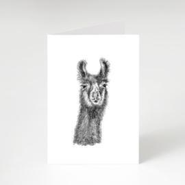 Zwart-Wit Wenskaart Alpaca