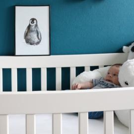 Zwart-Wit Poster Pinguïn