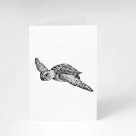 Zwart-Wit Wenskaart Schildpad