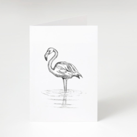 Zwart-Wit Wenskaart Flamingo