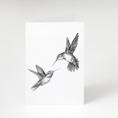 Zwart-Wit Wenskaart Kolibrie