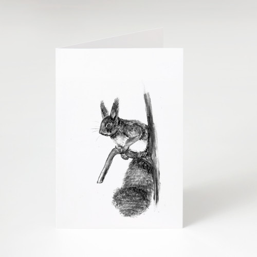 Zwart-Wit Wenskaart Eekhoorn