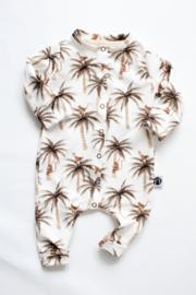 Boxpakje palm aap