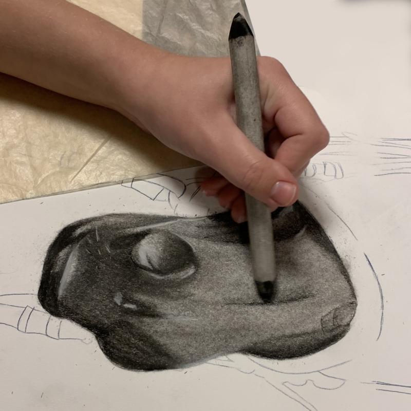 Thuiscursus tekenen met houtskool