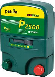 P 2500