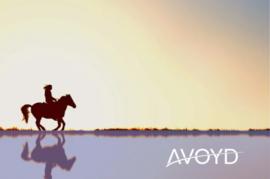 Op zoek naar een hippe outfit voor het paardrijden? Vijf tips!