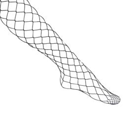 Panty Fashionable Fishnet