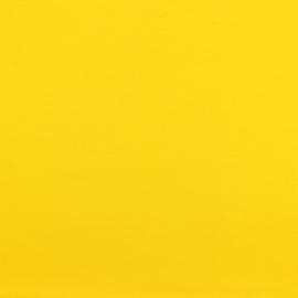 Jersey geel 009