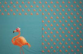 paneel flamingo aqua