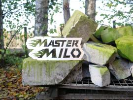 Mastermilo logo spuitmal