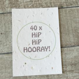 40 x hooray