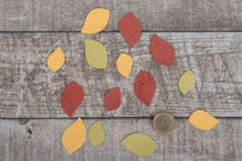 Uitdeelzak 10 stuks blaadjes herfstkleuren met bloemetjes