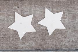 Grote sterren tuinkruiden