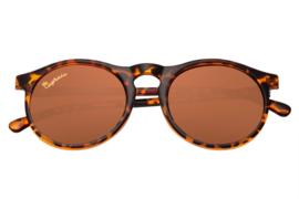 Capraia zonnebril - Arilla3