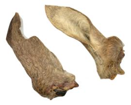 Carnis Ree-oren met vacht 5 stuks