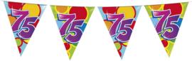 Vlaggenlijn Gekleurd - 75 jaar