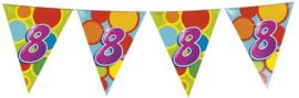 Vlaggenlijn Gekleurd - 8 jaar