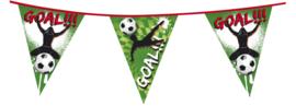 Goal feestje - Vlaggenlijn