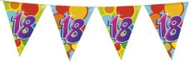 Vlaggenlijn Gekleurd - 18 jaar