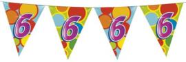 Vlaggenlijn Gekleurd - 6 jaar