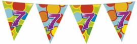 Vlaggenlijn Gekleurd - 7 jaar