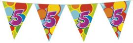 Vlaggenlijn Gekleurd - 5 jaar