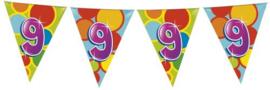 Vlaggenlijn Gekleurd - 9 jaar