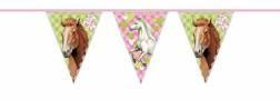 Paarden feestje - Vlaggenlijn