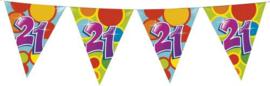 Vlaggenlijn Gekleurd - 21 jaar