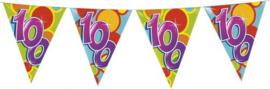 Vlaggenlijn Gekleurd - 100 jaar