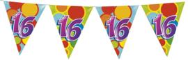 Vlaggenlijn Gekleurd - 16 jaar