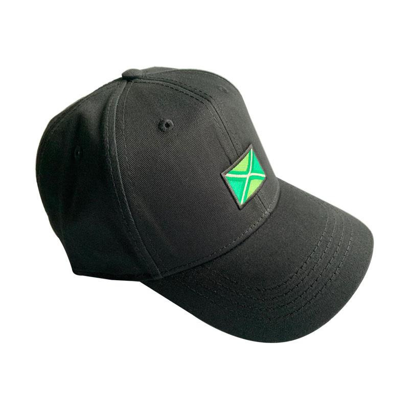 Achterhoekse vlag pet - Zwart
