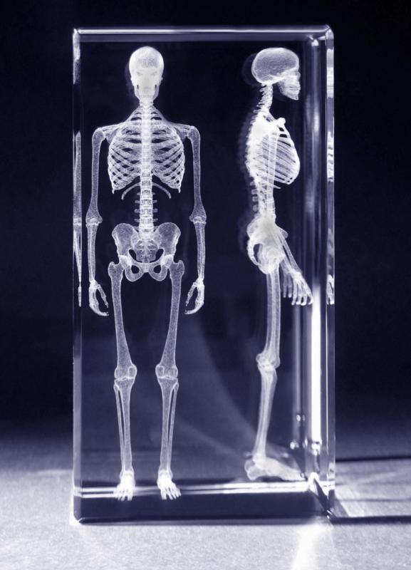 Educatieve 3D glas modellen