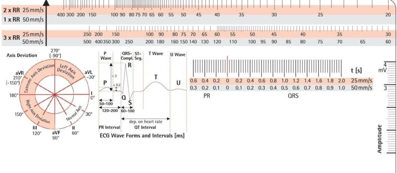 ECG liniaal 18 cm