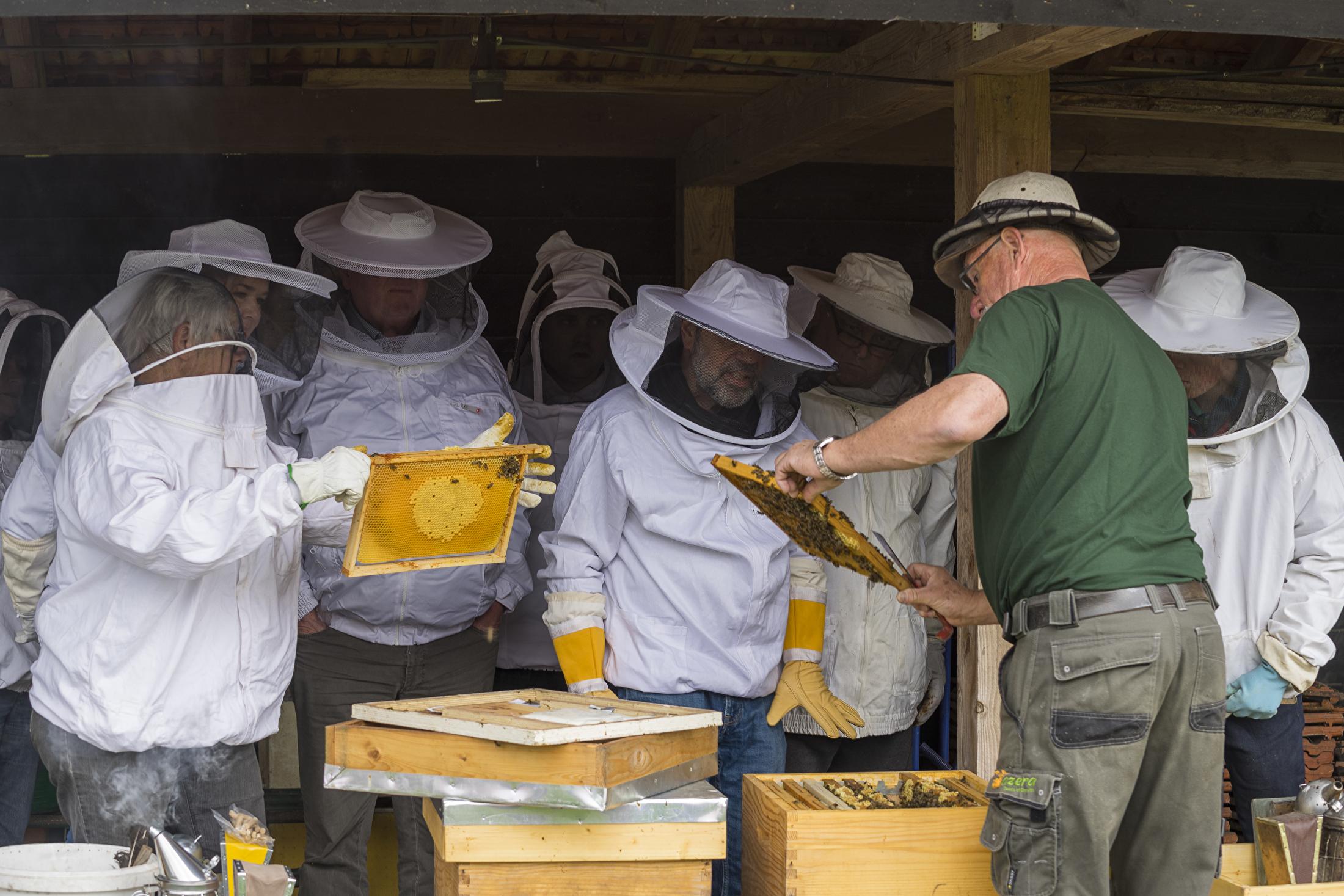 Bijenboerderij