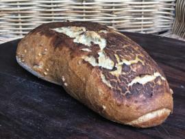 Bio Mosterd-brood (bio desem)
