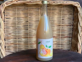 Bio Appel-Perensap 100% sap (vd biologische fruitteler uit Meijel)