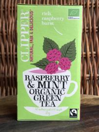 Bio groene thee Framboos & Munt (20 stuks)