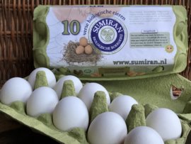 Biologische Eieren 10 STUKS