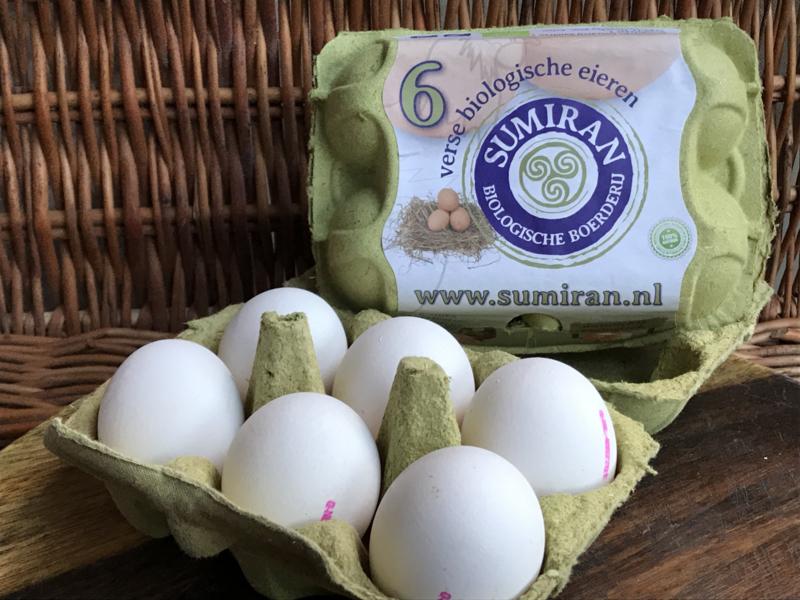 Biologische Eieren 6 STUKS