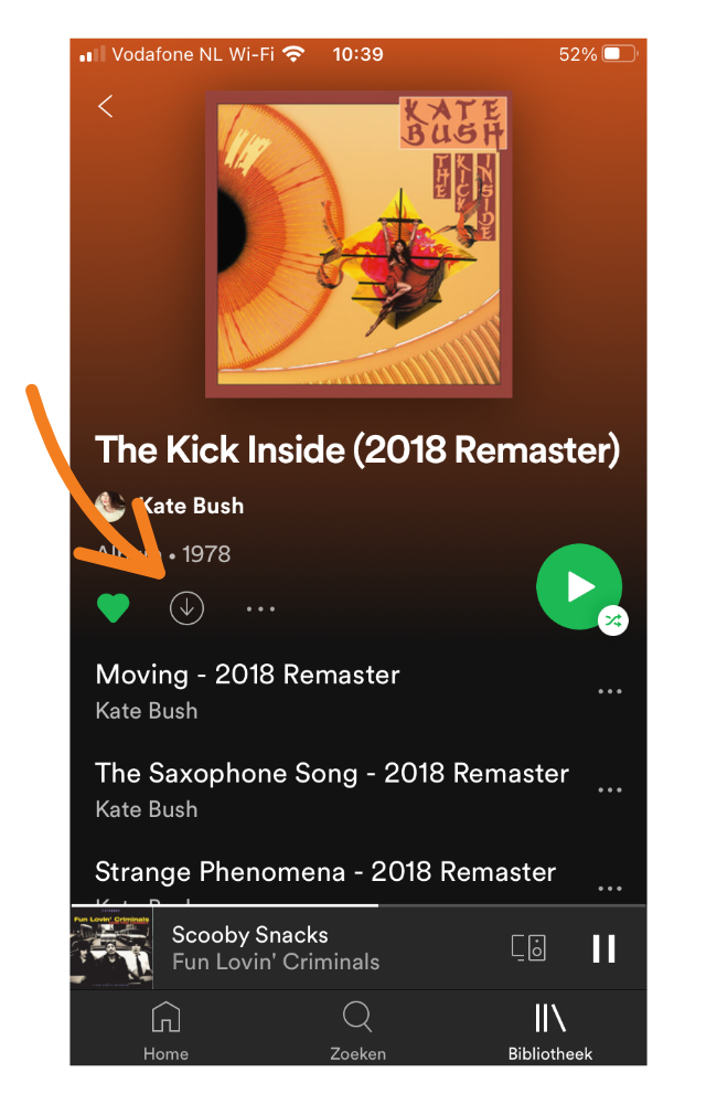 Spotify muziek downloaden