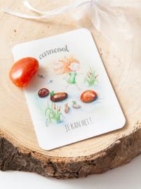 MOOQI - Knuffelsteen pakketje  Carneool