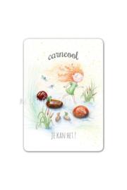 MOOQI - Cadeaukaartje Carneool