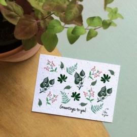 Bloom Your Message - Bloeikaarten 'Greentings to you!' (fleurige bloemen)
