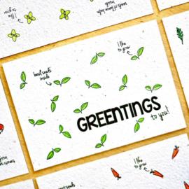 Bloom Your Message - Bloeikaarten 'Greentings to you!' (basilicum)
